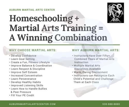 Auburn Martial Arts Flyer.jpg